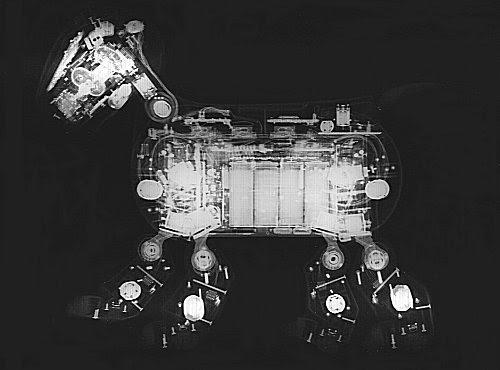 AIBO ERS-210 横からの写真