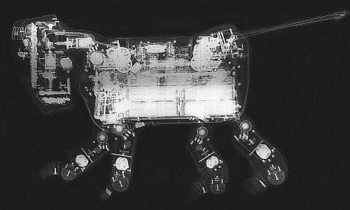 AIBO ERS-110 横からの写真
